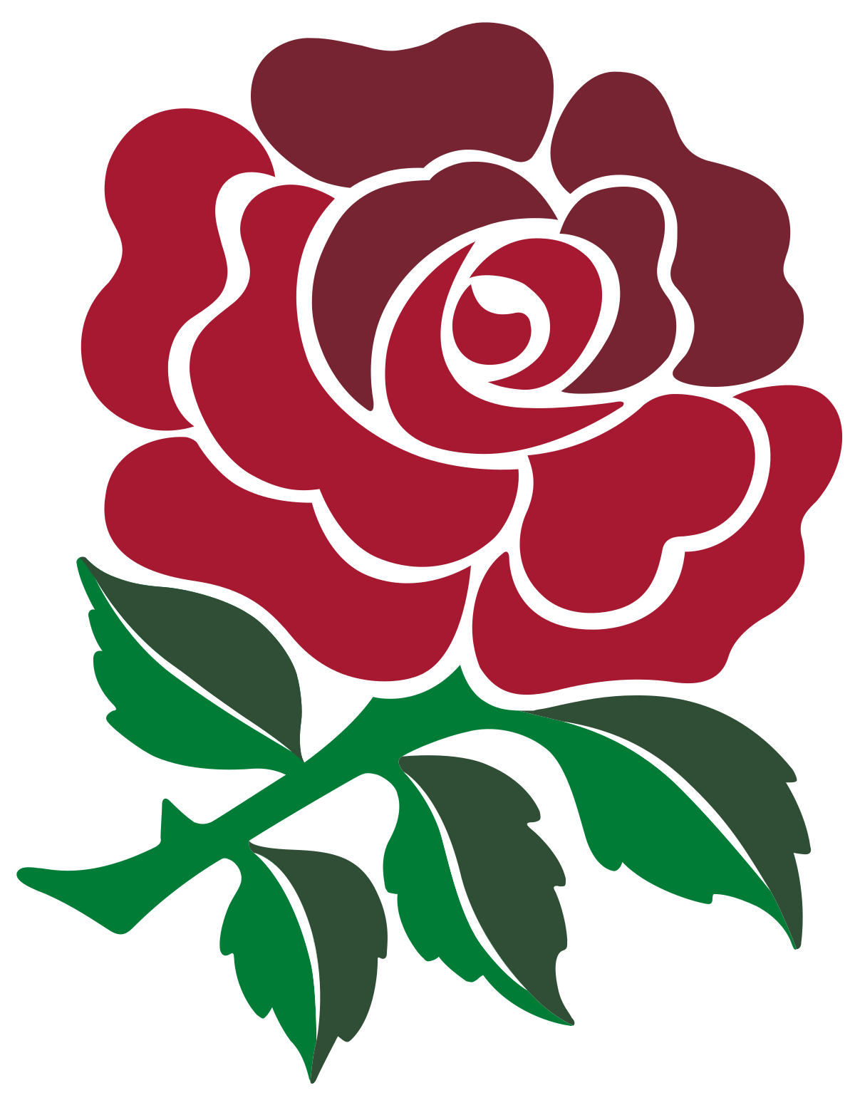 England national rugby union team.