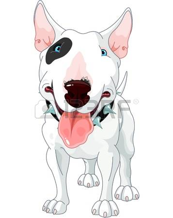 1,530 Bull Terrier Stock Vector Illustration And Royalty Free Bull.