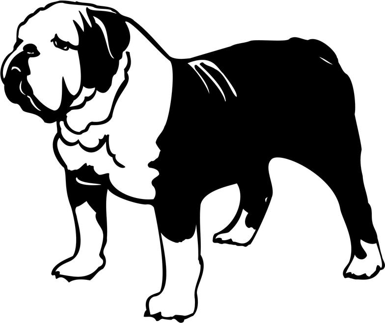 English Bulldog Clipart.