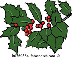 English holly Clipart and Stock Illustrations. 22 english holly.