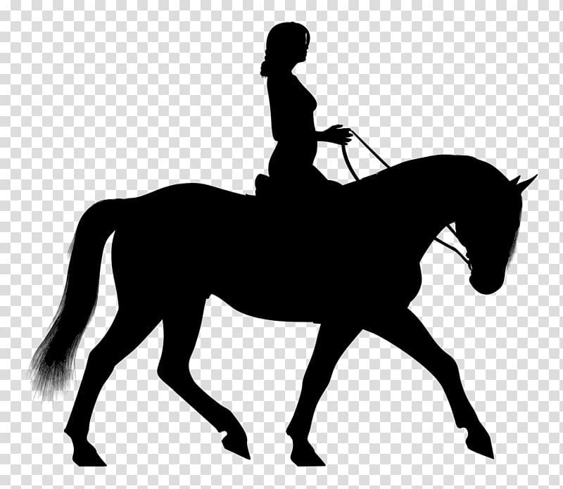 Horse&Rider Equestrian English riding , horse transparent.