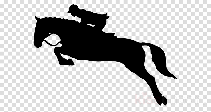 horse animal sports english riding bridle rein clipart.