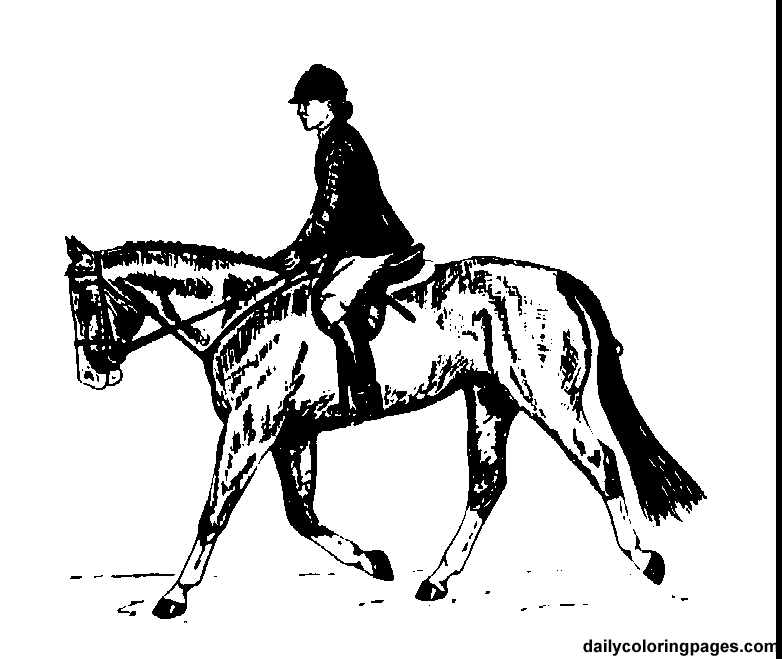english rider horse coloring pages.