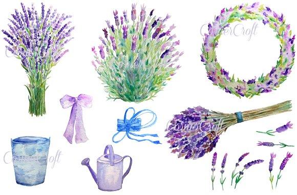 Watercolour Lavender Clip Art ~ Illustrations on Creative Market.
