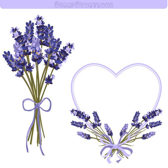 Lavender Flower Frame and Clipart.
