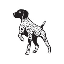 English pointer clipart.