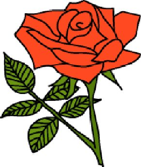 English rose clipart - Clipground