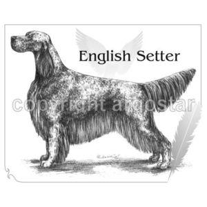 English Setter Shop.