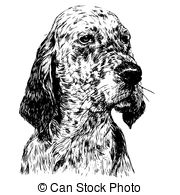 English setter Vector Clipart Illustrations. 126 English setter.