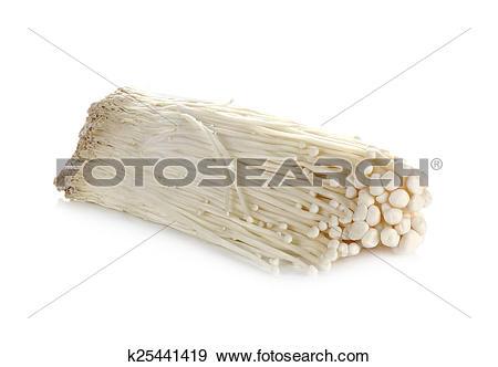 Stock Photograph of Enoki mushroom, Golden needle mushroom.