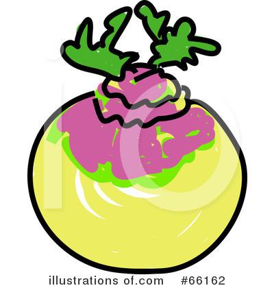 Turnip Clipart.