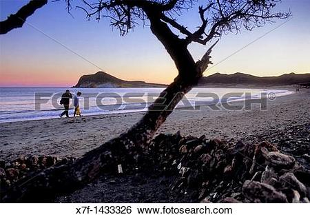 Stock Images of `Ensenada de los Genoveses? cove Cabo de Gata.