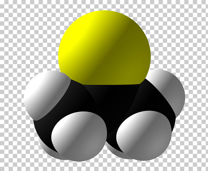 Polymer Entertainment Weekly Repeat unit Molecule, filler.