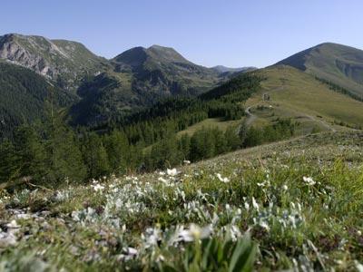 Landschaft_4.jpg.