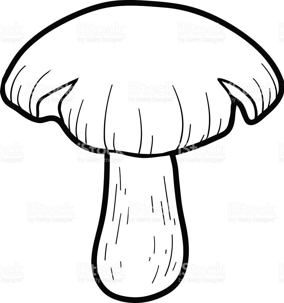Coloring Book Inedible Mushrooms Entoloma Sinuatum stock vector.