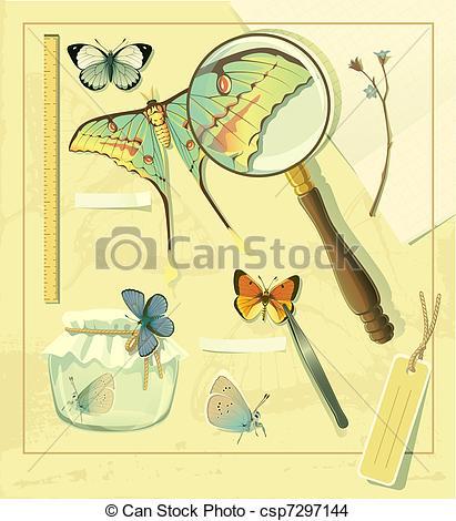 EPS Vector of Butterflies entomology.