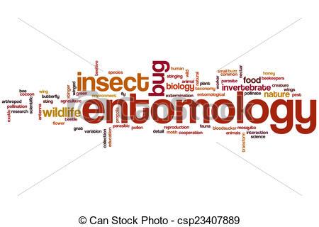 Stock Illustration of Entomology word cloud concept csp23407889.
