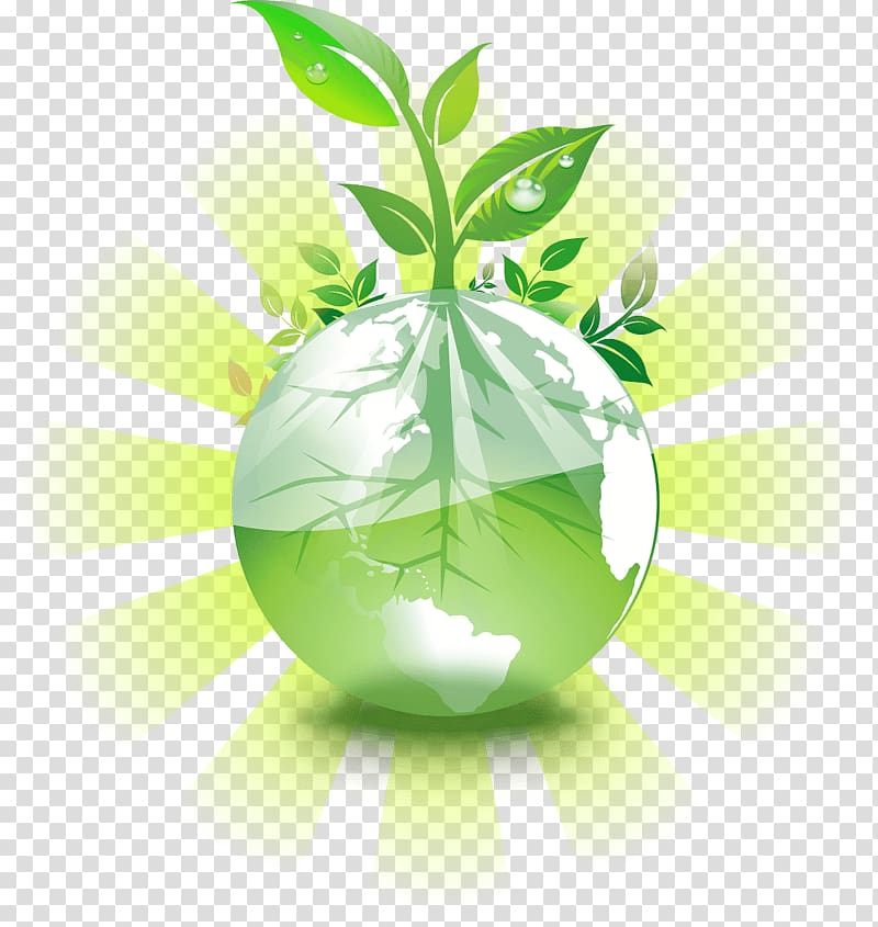 Plant sprout , Earth Natural environment Environmental.