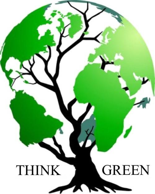 1000+ images about going green on Pinterest.