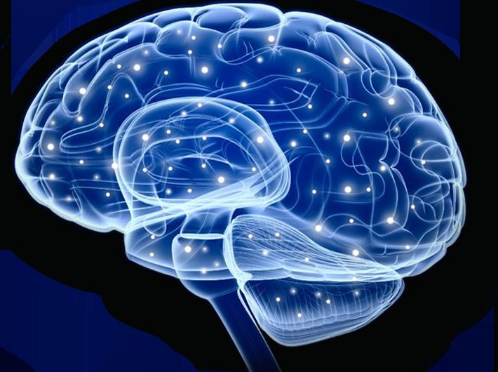 Epilepsy Association of Central Florida.