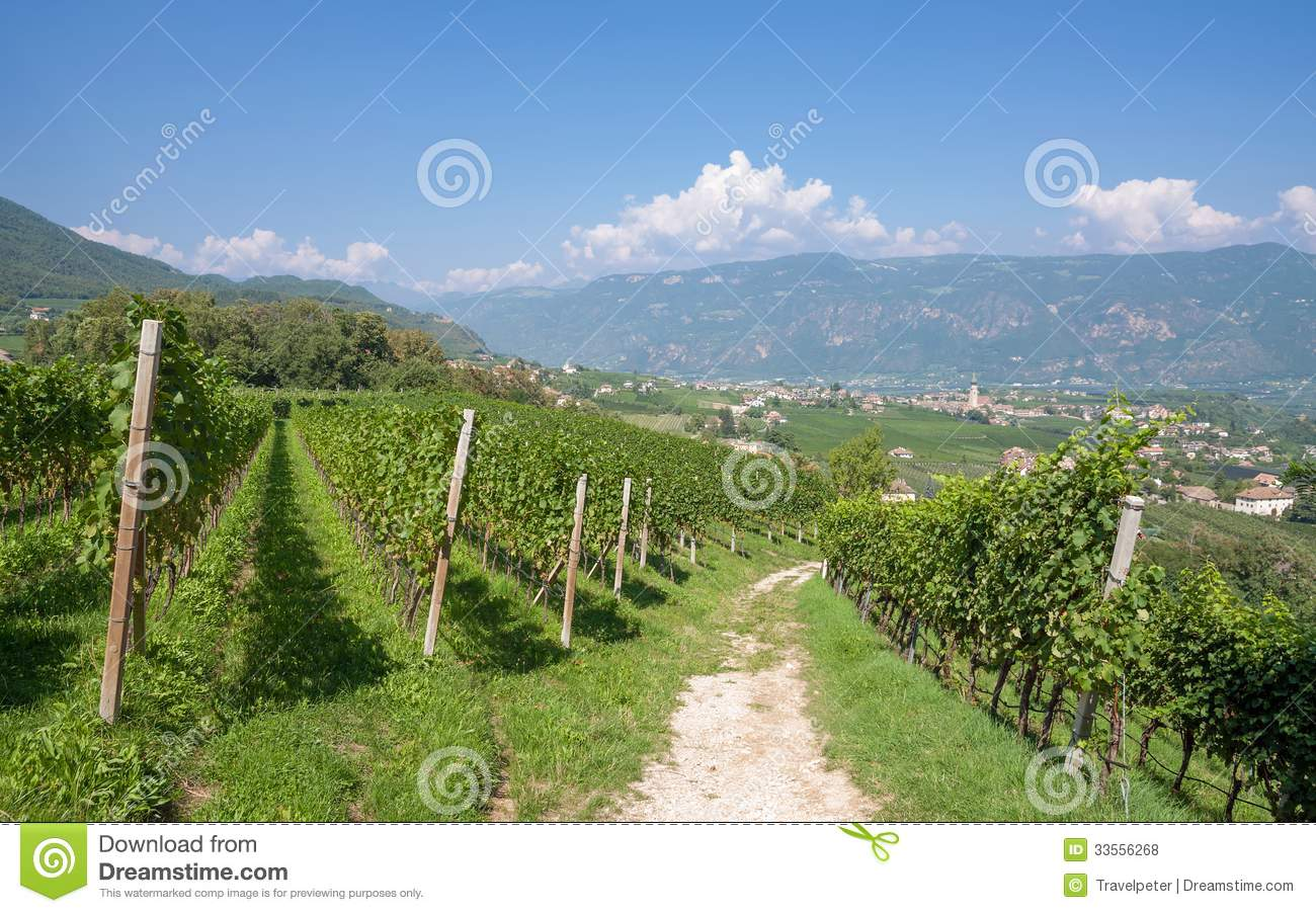 Eppan,south Tyrolean Wine Route,Italy Royalty Free Stock Photos.