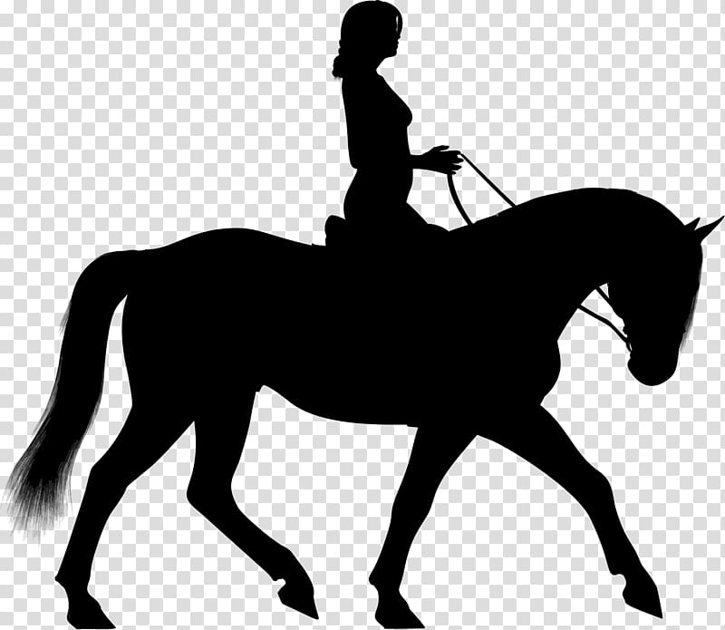 Horse Equestrian Silhouette , horse riding transparent background.