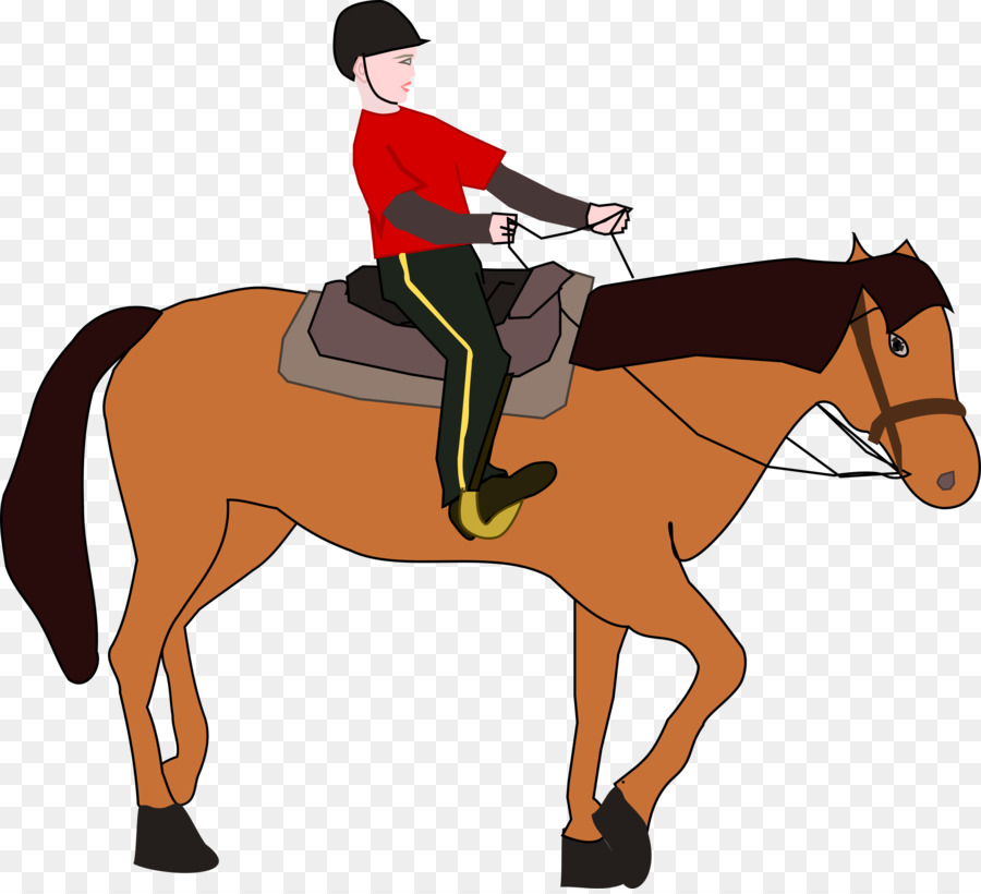 Horse Cartoontransparent png image & clipart free download.