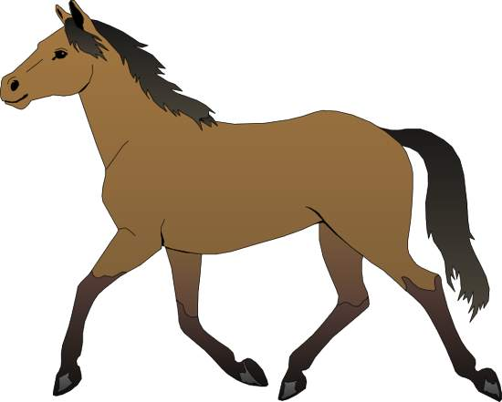 Clip Art Horse & Clip Art Horse Clip Art Images.