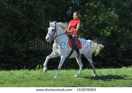 Equestrienne Stock Photos, Royalty.
