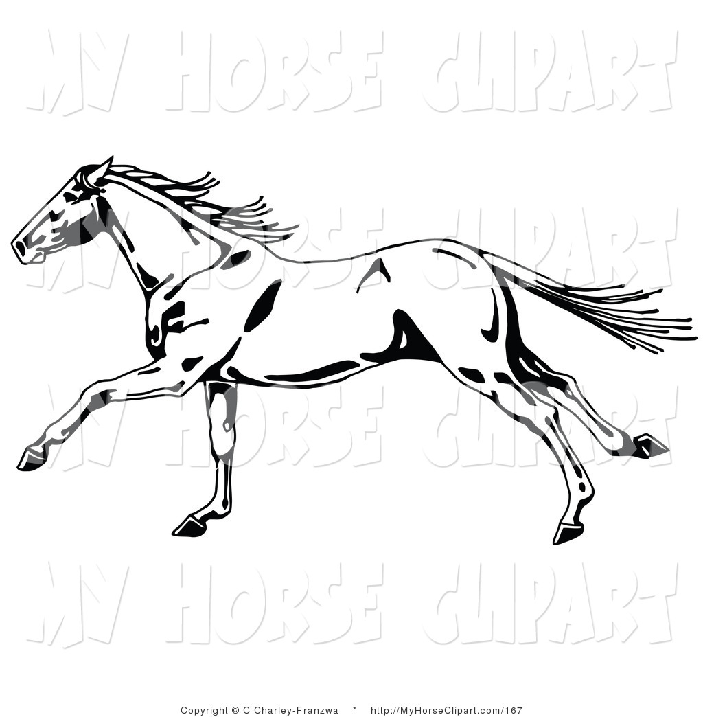 Clip Art of a Fast Black and White Wild Horse in Profile, Running.