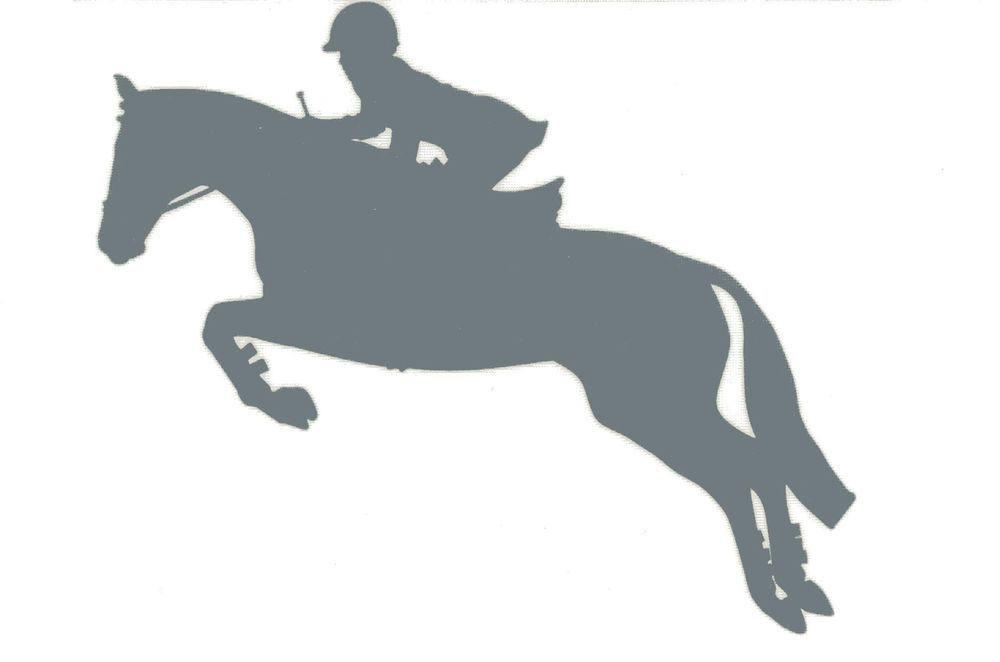 Jumping Horse Silhouette.