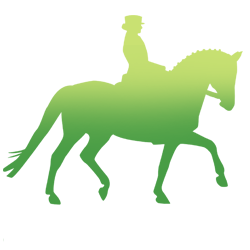 Equine.
