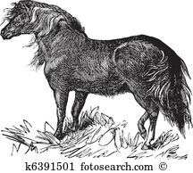 Equus Clip Art Royalty Free. 146 equus clipart vector EPS.