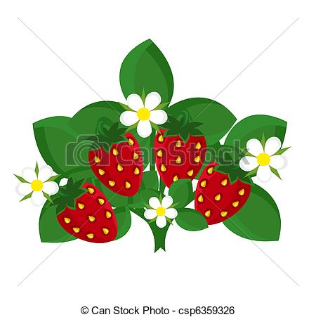 Clip Art Vektor von erdbeer, Pflanze.