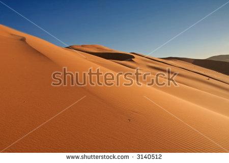 Dry Sahara Desert Near Merzouga Morocco Stock Photo 261698327.