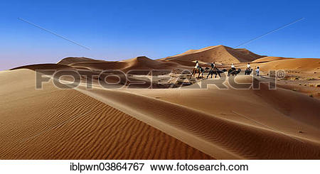 """Picture of """"Camel rides on the Sahara sand dunes of Erg Chebbi."""