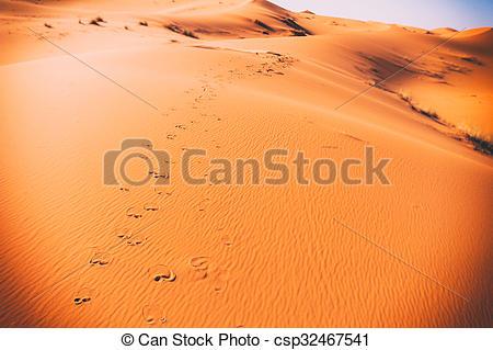 Stock Photo of Camel footprints, Sahara, Erg Chebbi, Morocco.