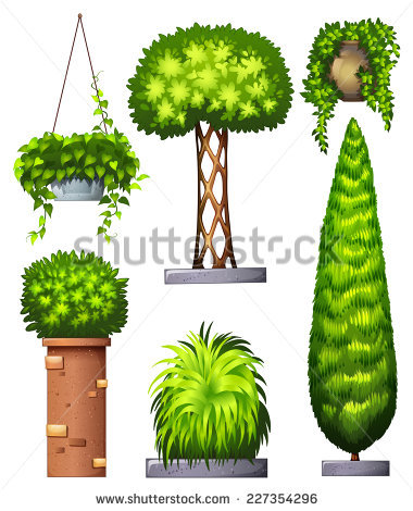 Planta Stock Photos, Royalty.