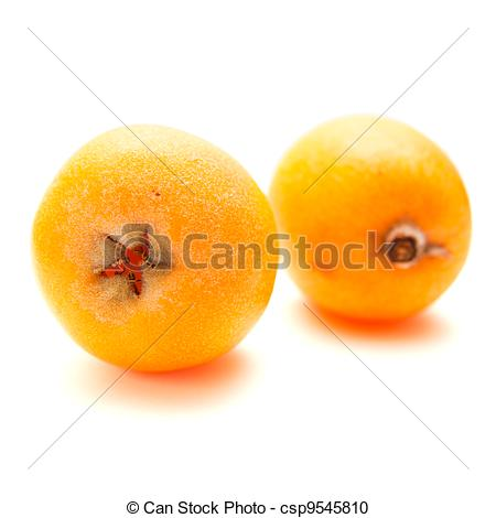 Stock Photography of Loquat isolated.