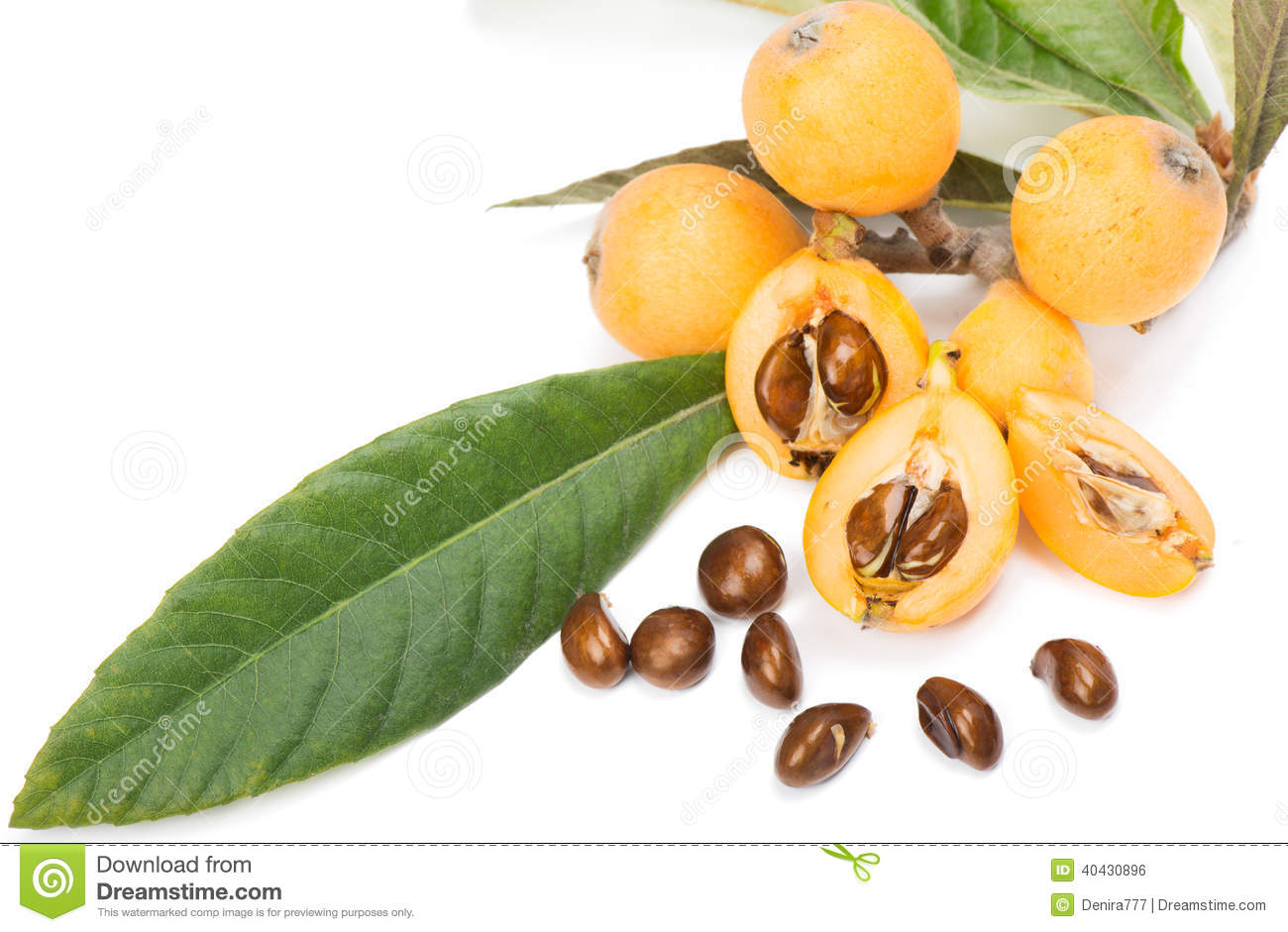 Loquat Fruit (Eriobotrya Japonica L.) Stock Photo.
