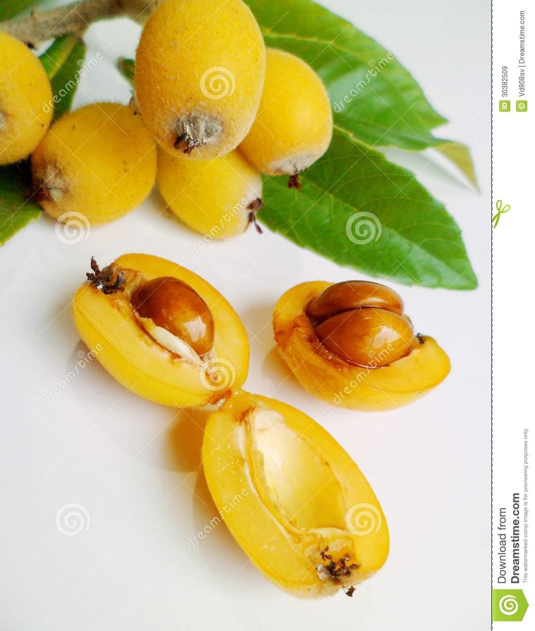 Loquat (Eriobotrya Japonica) Royalty Free Stock Images.