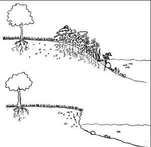 Soil Erosion Clipart.