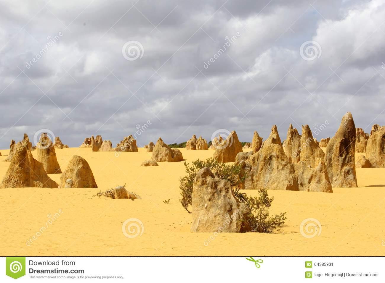 Panorama Of The Yellow Pinnacles Desert, Nambung National Park.