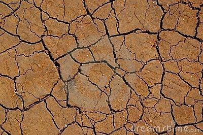 Soil erosion prevention clipart.