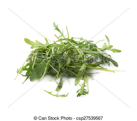 Stock Image of Eruca sativa rucola rocket salad.
