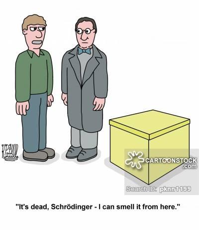 Erwin Schrodinger Cartoons and Comics.