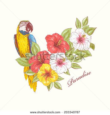 Parrots Flower Stock Photos, Royalty.
