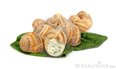 Escargot With Cheese Royalty Free Stock Images.