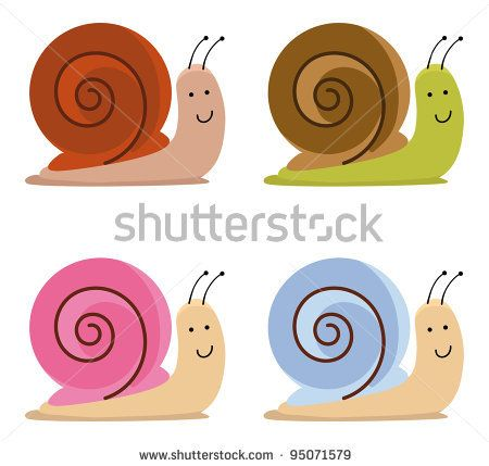 1000+ images about Bugs: Snails on Pinterest.