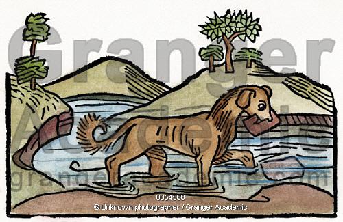Image of AESOP: DOG & SHADOW, 1484..